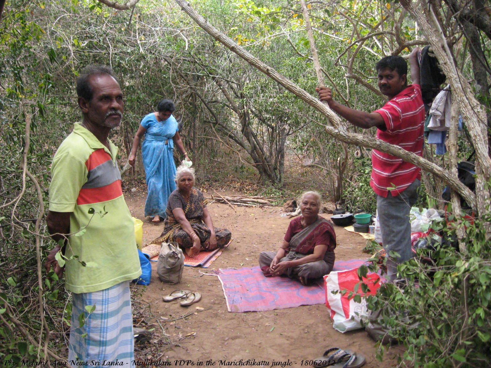 Tamil sex srilanka